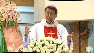 Đức Cha Phêrô  Nguyễn Văn Khảm: Bài Giảng Lễ Ba Vua