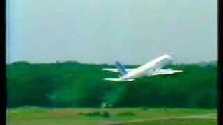 Accidente aéreo de Habsheim (ángulo opuesto)