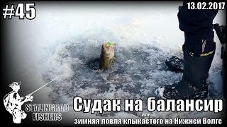 Судак на балансир или зимняя ловля клыкастого на Нижней Волге - 17.02.2017