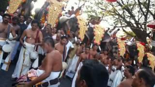 Manapullikavu Vela 2014- Shri.Kunissery Chandran