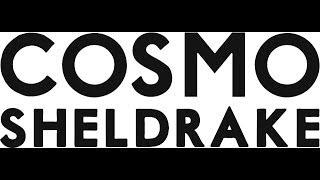 Cosmo Sheldrake - Prefusify