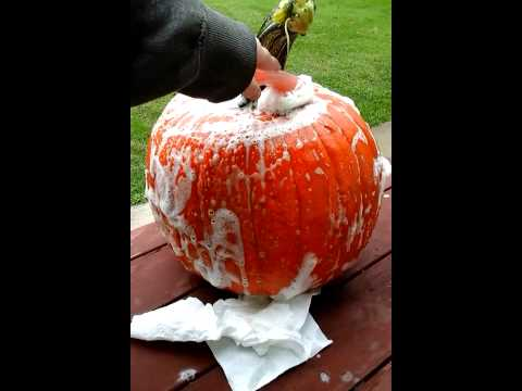 How to clean a pumpkin with Debrah and Sally.