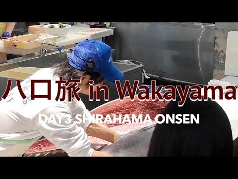 【和歌山旅行VLOG】とれとれ市場、三段壁、千畳敷、白浜温泉、Shirahama Onsen【DAY3】