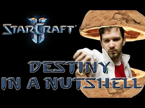 Destiny in a Nutshell