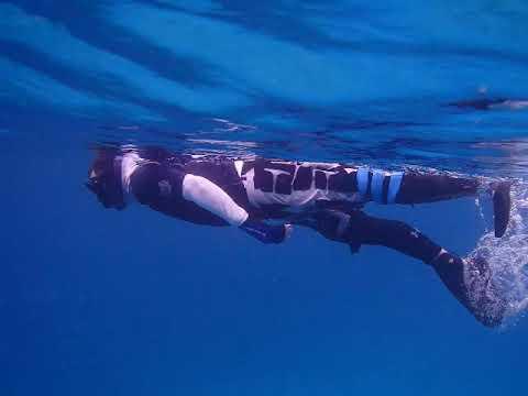 Above Knee Amputee Snorkel Swim with Shinfins good