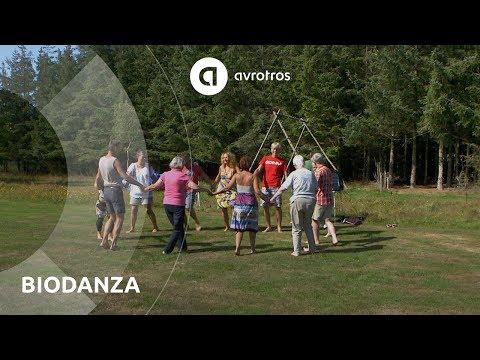Voel je vrij en vier de zomer met Biodanza  | Ik Vertrek