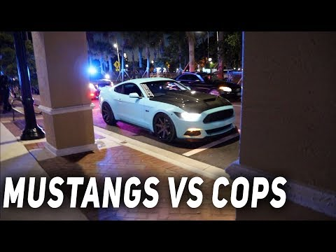 COPS HARASS MUSTANG OWNERS ALL NIGHT [Mustang Takeover 2019]