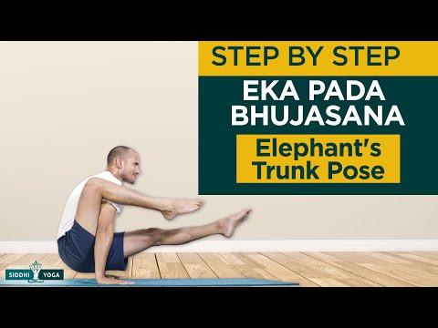 Eka Pada Bhujasana (Elephant Trunk Pose) Benefits, How to Do by Yogi Tara Siddhi Yoga