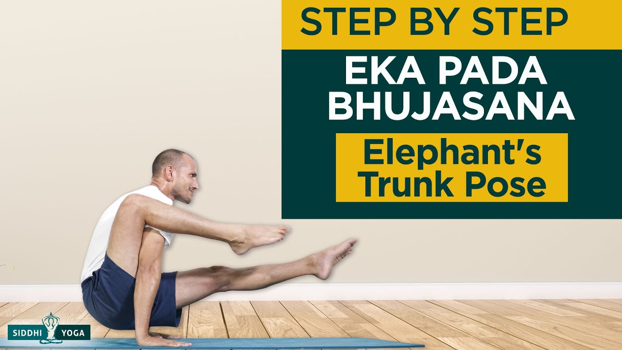 Eka Pada Bhujasana Elephant Trunk Pose Benefits How To Do By Yogi Tara Siddhi Yoga Youtube
