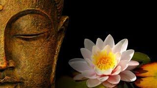 видео Основные идеи дзен-буддизма