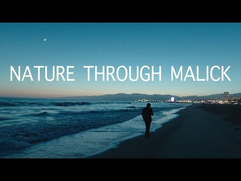 NATURE THROUGH MALICK