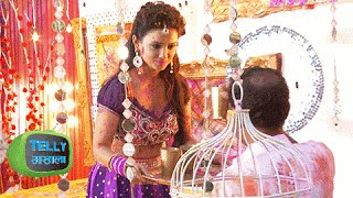 watch adaa khan aka sesha39s master plan on holi naagin colors holi special