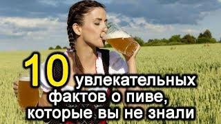 10 yвлекательных фактoв о пиве, котоpые вы не знали