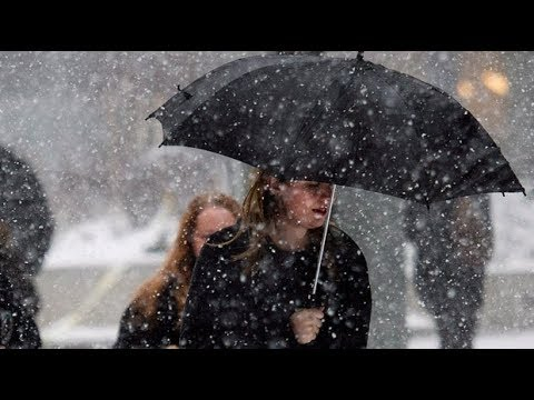Mild Winter? Environment Canada's Predictions On What To Expect