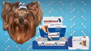 Мильбемакс для собак | Инструкция по применению.