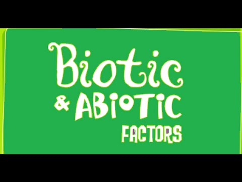 Biotic and Abiotic Factors  -Ecosystem