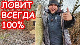 КАК ПОЙМАТЬ ЩУКУ на спиннинг на малой реке Лучшая приманка на щуку Рыбалка 2020