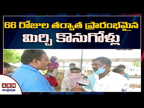 Trading begins at Khammam chilli yard after two months | ABN Ground Report teluguvoice