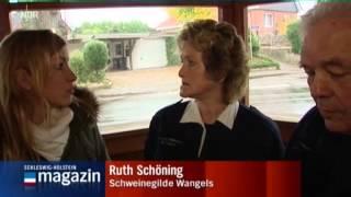 Die Dorfgeschichte aus Wangels im Kreis Ostholstein