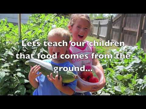 Food Corps Application