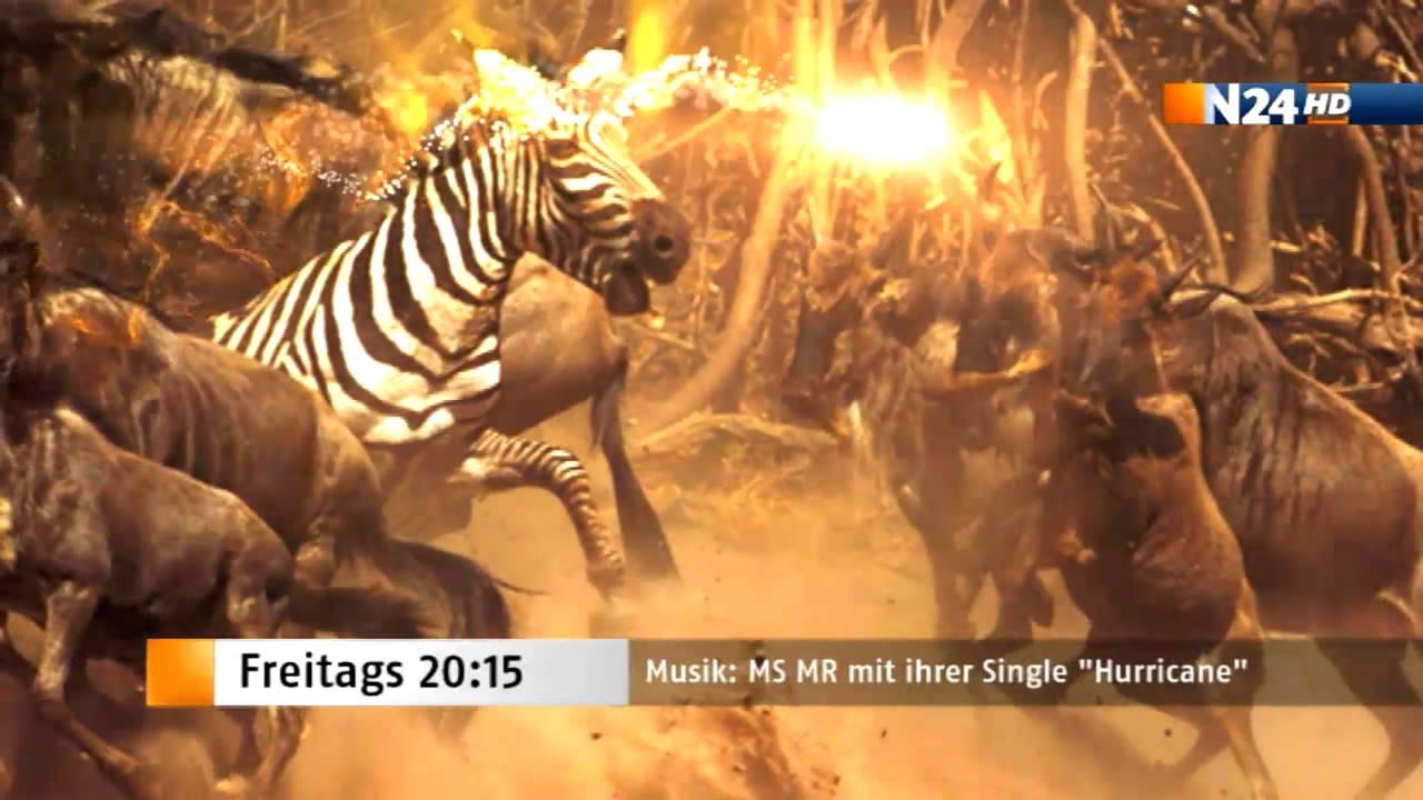 Das N24 Highlight am Freitag Musik MS MR