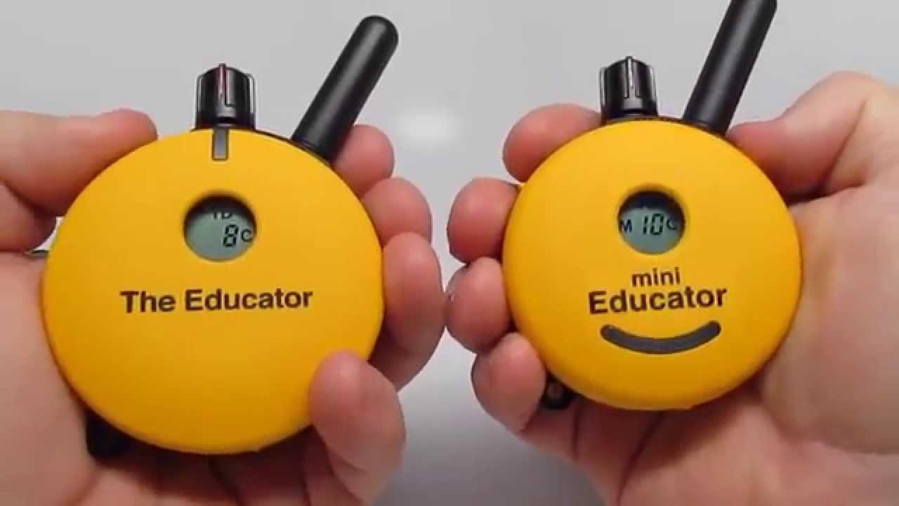 E-Collar Technologies Mini Educator ET-300 VS Educator ET-400