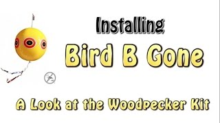 A look at the Bird B Gone Woodpecker Kit