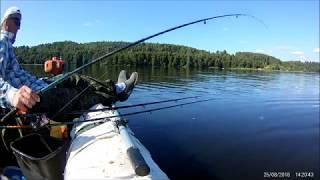 Рыбалка, с лодки, лещ , волга ,25 августа. Кинешма. Поклёвки  00:01, 12:00, 14:05, 25:30.