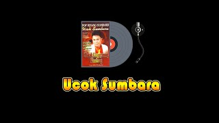 UCOK SUMBARA - FULL ALBUM | Lagu Minang (The Best Ucok Sumbara)