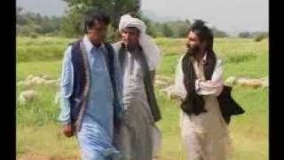 Sheep farming Drama.Pakistan Dr.Ashraf Sahibzada