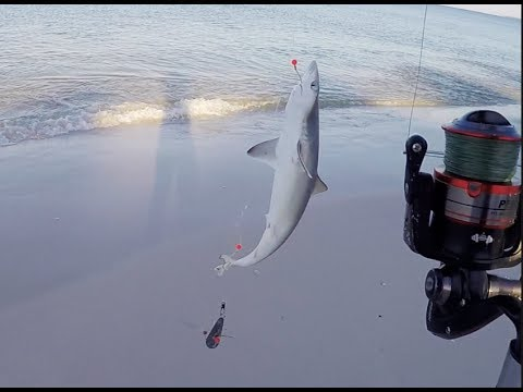 Mexico Beach Florida Surf Fishing Part 1