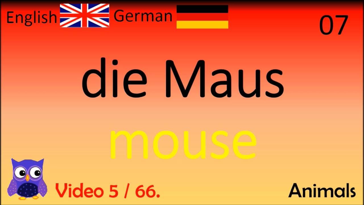 05 animals tiere deutsch englisch w246rter english