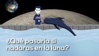 ¿Qué pasaría si nadaras en la luna? ¿Qué pasaría si nunca dejaras de crecer? [DA]