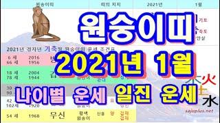 1월 원숭이띠 운세 - 2021년 1월 경자년 기축월 원숭이띠 일진 사주 운세보기