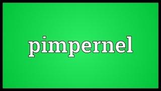 Pimpernel Meaning