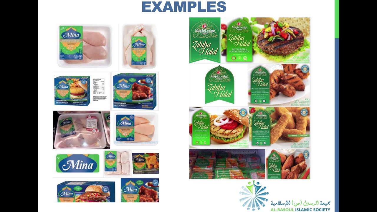 Examples of Halal and Haram Products in Some Markets - Sayed Aqeel Shah