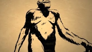Who Was the First Human Ancestor? - Instant Egghead #31
