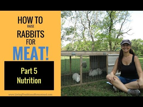 How to Raise Rabbits for Meat: Part 5 Rabbit Nutrition