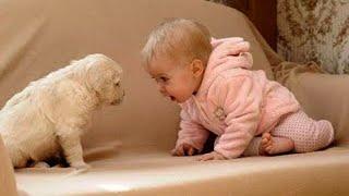 😍 재미있는 강아지와 함께하는 아기 👶🐶