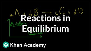 Reactions in Equilibrium