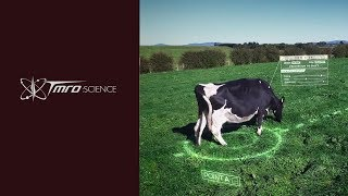 Artificial Intelligence Controlled Cows - Discovery 01.09
