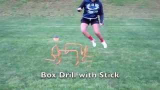Mini Hurdle Drills