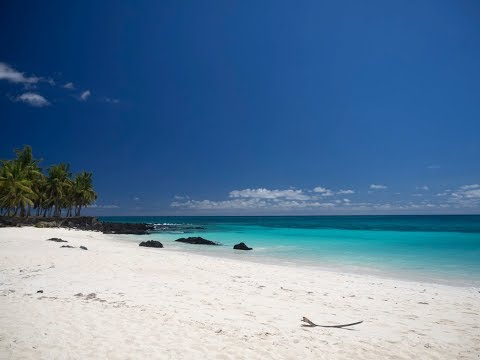 Comoros, in East Africa, a real island Paradise with humpback whales and dolphins and a lot more.