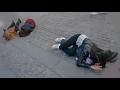 Copenhagen Girls Drop Dead