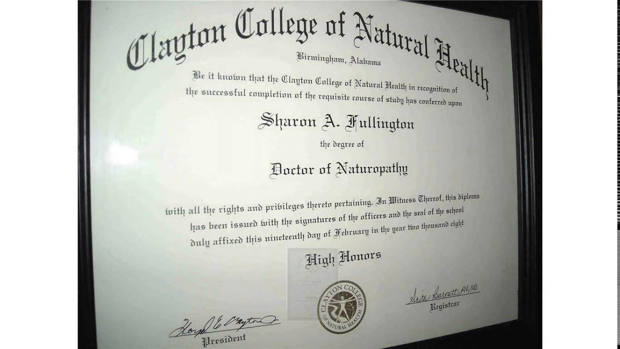 Diploma Naturopathy Youtube