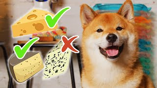 Tofu's Worlds of Foods - Cheese Review