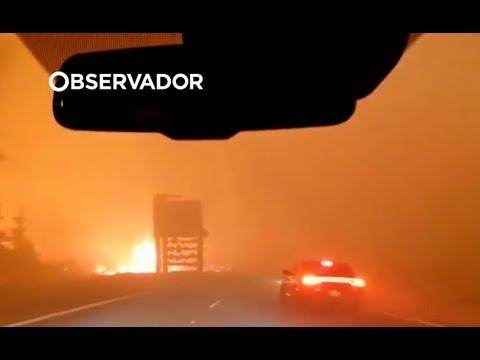 Califórnia. Família conduz entre chamas e consegue escapar de incêndio