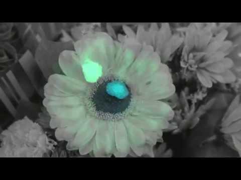 Turnstile - Drop [Official Video]
