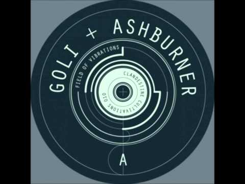 Goli & Ashburner - Field Of Vibrations