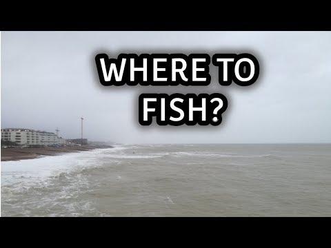 Where To Fish?